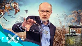 Dürre Zeiten – Der Kampf ums Wasser