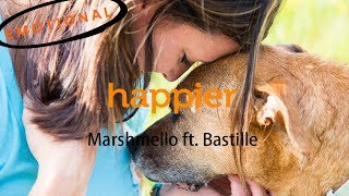 Baixar Happier - Marshmello ft. Bastille (music video) | Emotional video of Dog