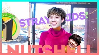 Stray Kids in a Nutshell (a.k.a Crack)