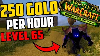 Farming 250 Gold Per Hour At Level 65 - Make Gold While Leveling in TBC Classic!