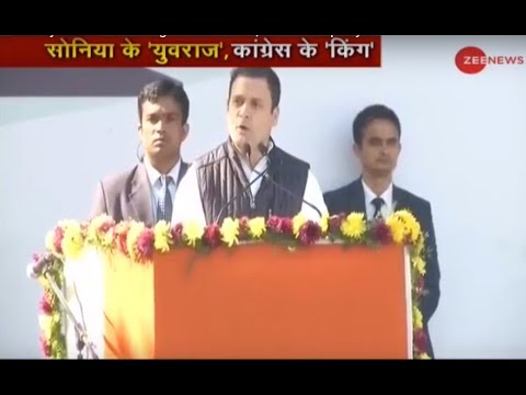 Rahul Gandhi officially elevated as Congress President, addresses party workers
