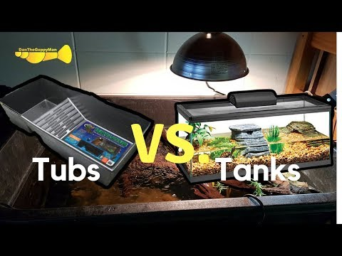 BEST TURTLE ENCLOSURES:  Tub Vs. Tanks