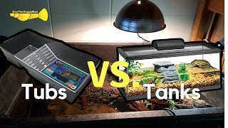 BEST TURTLE ENCLOSURES:  Tub vs. Tanks