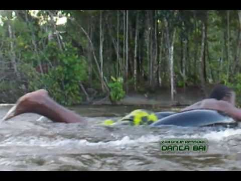 Dan Ta Bai Suriname