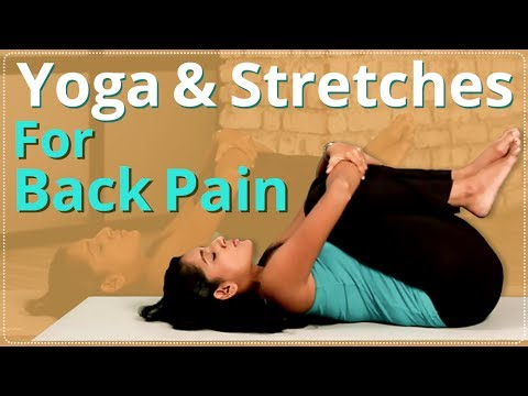 yoga for back pain  stretches for back pain  easy yoga