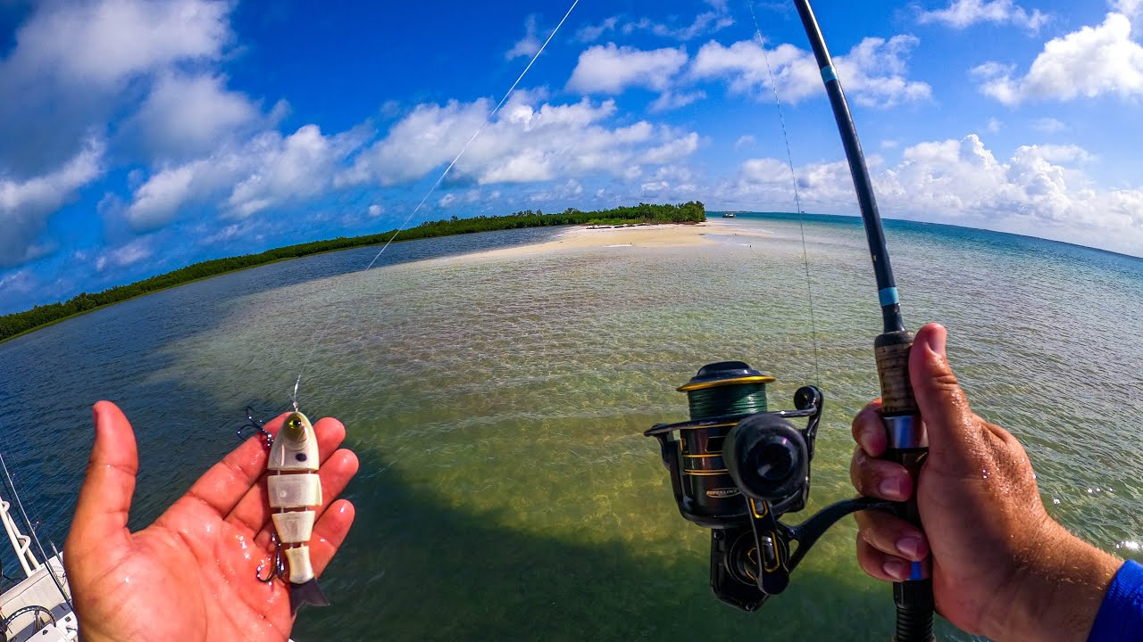 Fishing Huge Saltwater Barrier Islands with Swimbaits