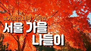 서울 가을 단풍 나들이 늦가을에 매력이 가득한 서울 여행지썸네일