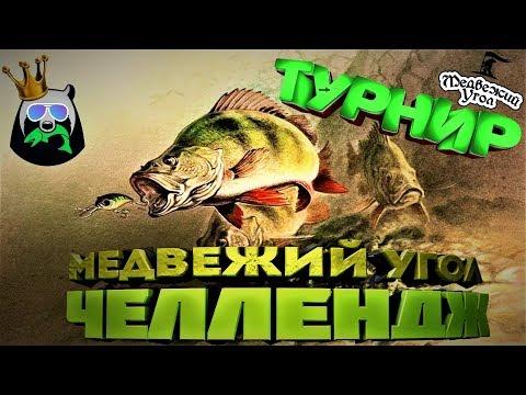 Официальный Турнир ????+ Челлендж на 10к серебра !!Русская Рыбалка 4 (ссылка в описании)