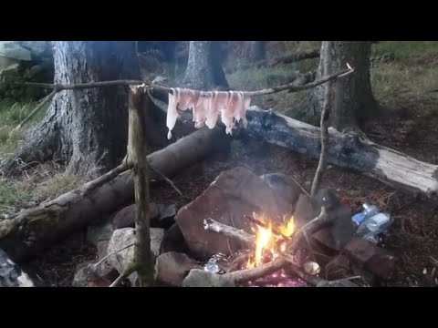 wild camping in the woods bushcraft scotland Winter -4 Fairlie Moors campfire cooking