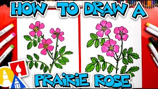 How To Draw A Prairie Rose Flower