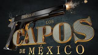 Los Capos De Mexico - Error De Un Padre (La Niñita)