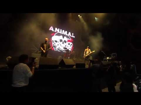 A.N.I.M.A.L. - (completo) (en vivo) - Cartel Final Corona Hell and Heaven 2016