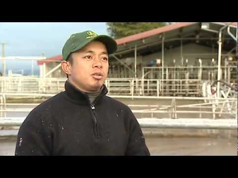 Sector Report 2012 Ep 16: Migrant Workers