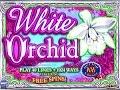 $4 Bet IGT WHITE ORCHID Multiple retriggers BIG WIN 5c Denom