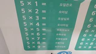 쏨쏨뉴스 구구단특집 5단