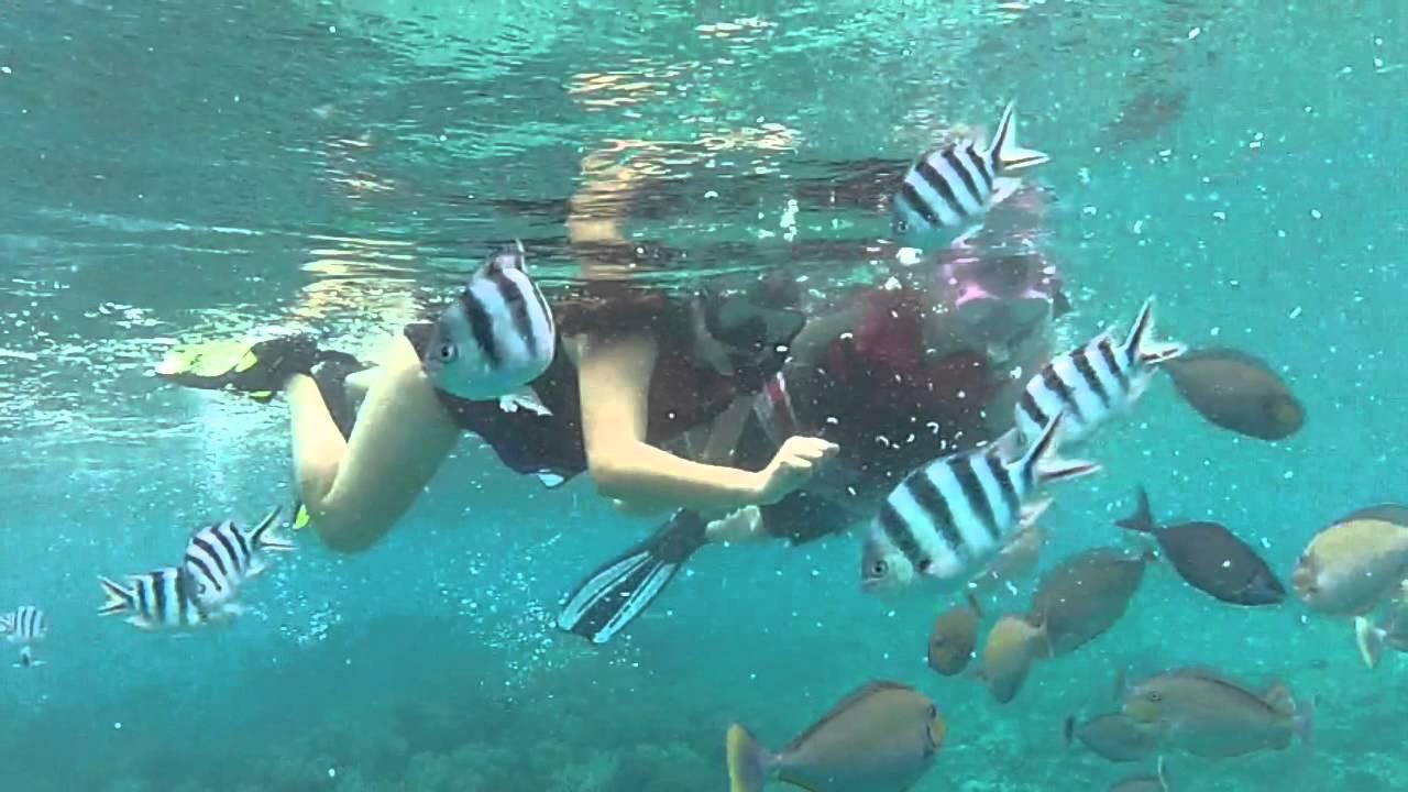 Guam Snorkeling Tours