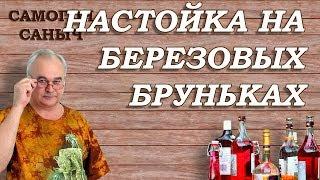 Настойка на БЕРЕЗОВЫХ БРУНЬКАХ / Рецепты настоек / Самогон Саныч