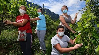 Protecting cross-border workers