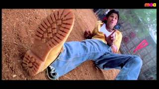Desamuduru Movie - Allu Arjun | Hansika