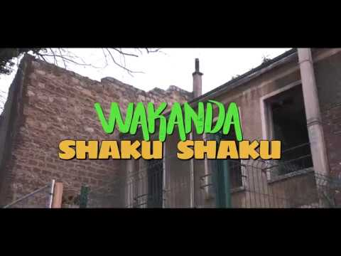Pheno Ambro - WAKANDA SHAKU SHAKU ( Official Video )