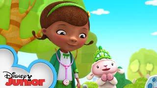 Doc Saves St. Patrick's Day! 🍀 | Doc McStuffins | Disney Junior
