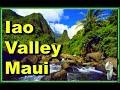 ★Exploring Iao Valley State Park | Maui | Hawaii|4K★