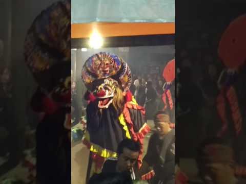 BATORO PUTRO Live Balai Desa Kaliombo
