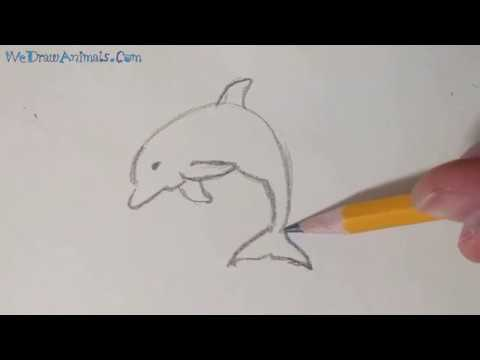 How To Draw A Dolphin In 5 EASY Steps - GREAT For Kids & Beginners
