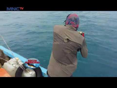 Mencari Juara Mancing Belitung 2016  - Mata Pancing (29/11)