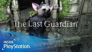 The Last Guardian: 5 Dinge, die uns umgehauen haben!