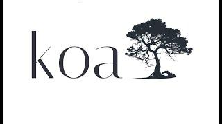 Protein Shakes - Introduction to Koa.js