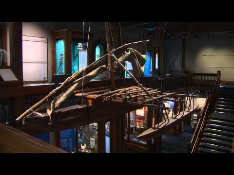 Bishop Museum opened a new exhibit this weekend.. Pacific hall