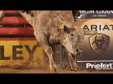 WRECK: Shane Proctor takes a hit after riding Tahonta's Magic for 86.25 points (PBR)