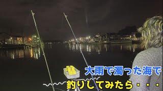 大雨で濁った海で釣りしてみたら・・・