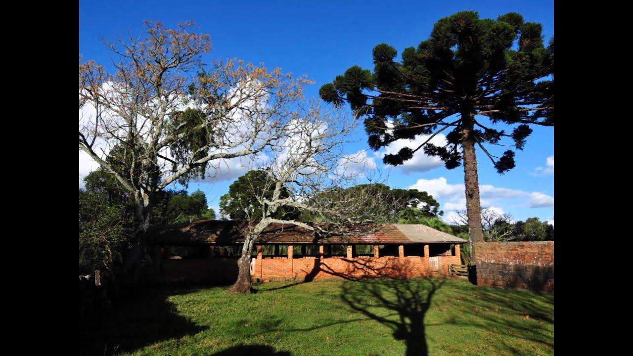 Muitos Capões Rio Grande do Sul fonte: i.ytimg.com