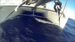 sailing the CAT - SWELL, Leopard 48