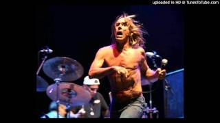 Iggy & The Stooges - My idea of fun