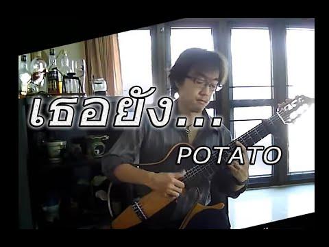 เธอยัง... POTATO / Fingerstyle Solo Guitar / by Nobu