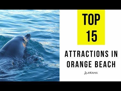 Attractions & Things to Do in Orange Beach, Alabama. TOP 15