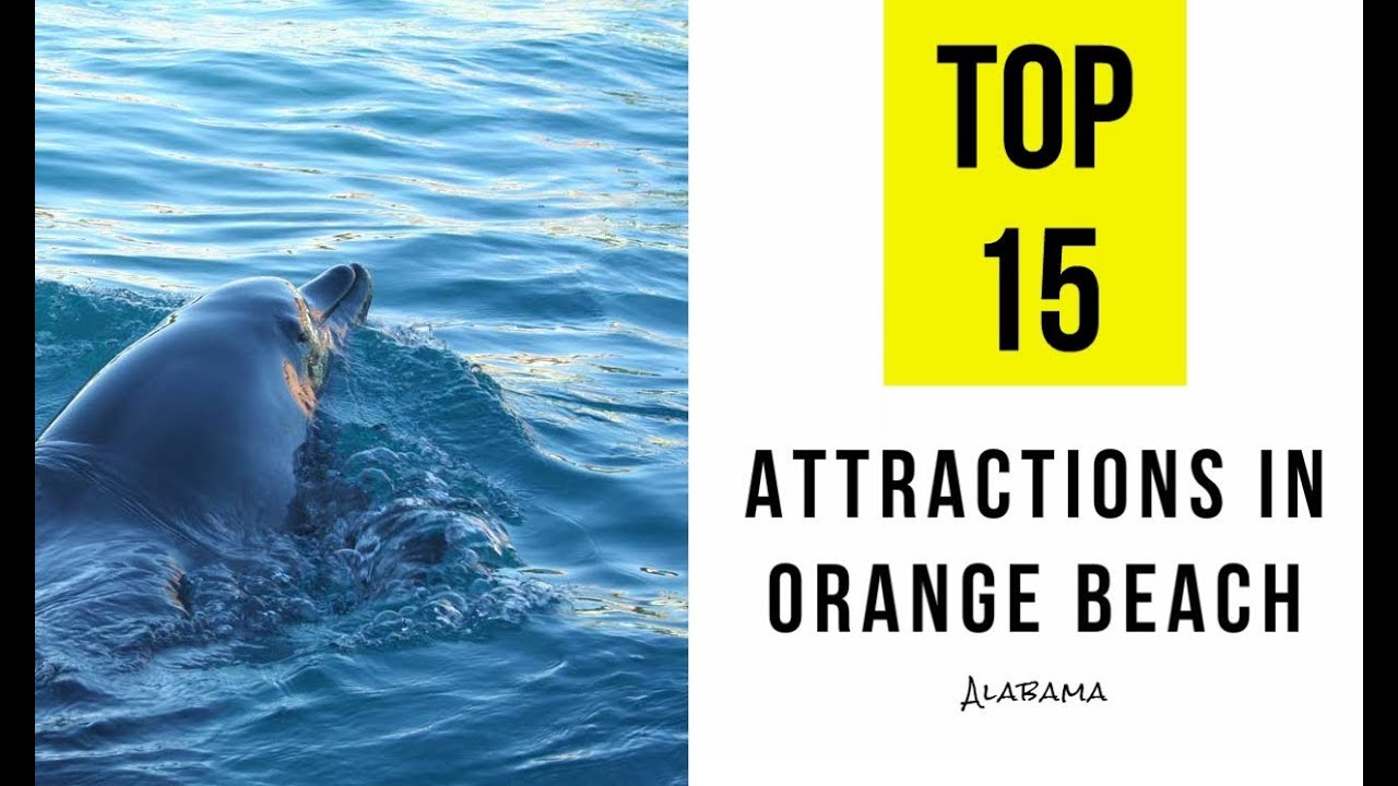 Attractions Things To Do In Orange Beach Alabama Top 15