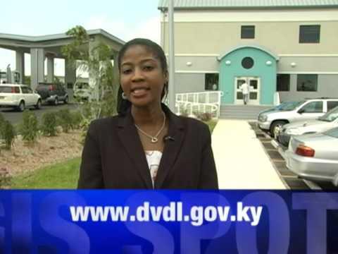 DVDL New Office