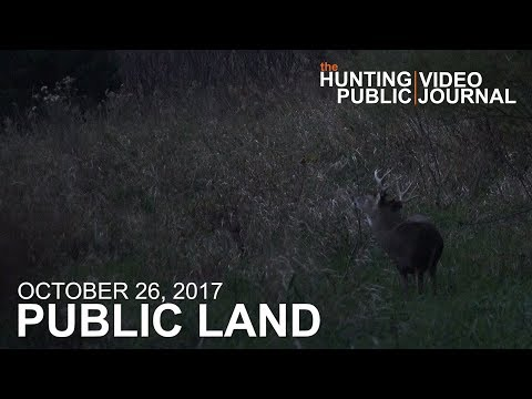 Public Land Day 23: Spot And Stalk Buck | The Hunting Public