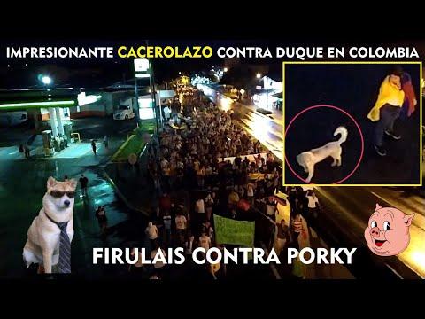 #Cacerolazo Contra Duque En La Vía Cartago - Cali Colombia 🐶Firulais En La Marcha Nocturna.