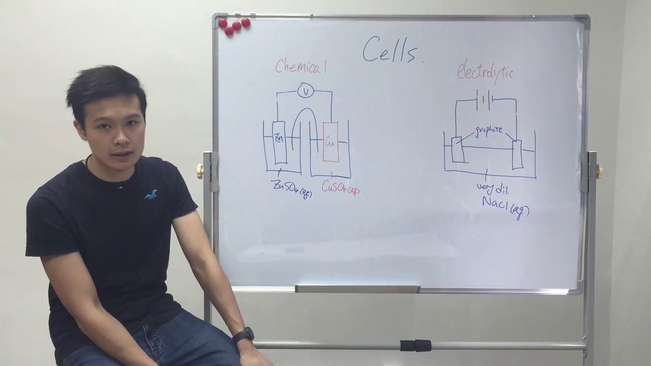 Dr Sean 高速解書系列 - Cells