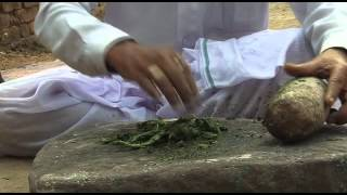 Dhatura- Healing Powers Of Medicinal Plants