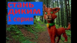 СТАНЬ ДИКИМ \1 СЕРИЯ\ МУЛЬТФИЛЬМ КОТЫ ВОИТЕЛИ