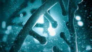 Genetische Programmierung | Wie Gene unsere Persönlichkeit beeinflussen | Doku 2015 HD
