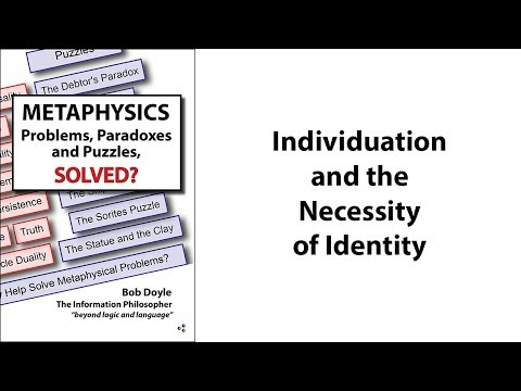 Individuation and the Necessity of Identity