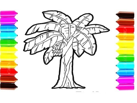 How To Draw And Color Banana Tree Coloring Pages For Children Youtube