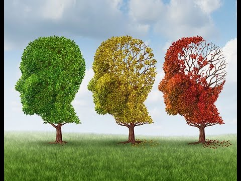 Alzheimer's disease - The latest research and a search for a